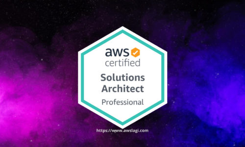 AWS Certified Solutions Architect Professional SAP-C01 Actual Exam