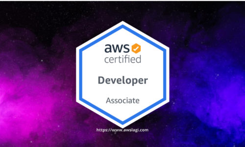 AWS Certified Developer Associate DVA-C01 Practice Exam